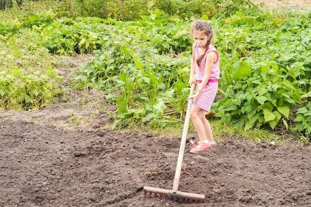 Una bambina di sei anni in estate spiana il terreno con un lungo rastrello.
