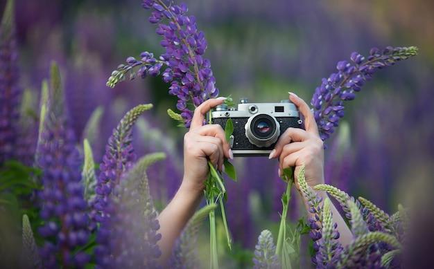 Una ragazza in un campo estivo con i lupini che tiene in mano una vecchia macchina fotografica