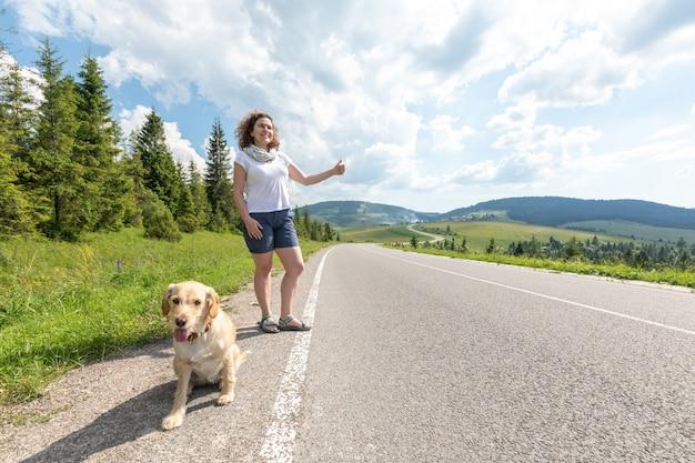 La ragazza con il cane sulla strada in montagna sorprende un'auto di passaggio mentre fa l'autostop