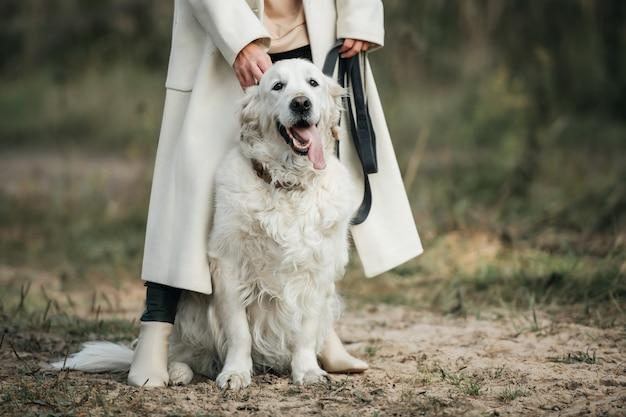 Ragazza con il cane bianco golden retriever sulla strada forestale