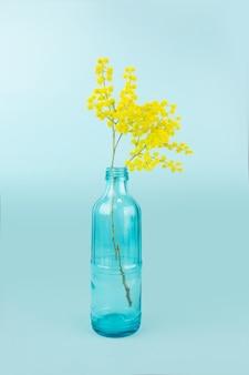 Bottiglia di vetro con mimose gialle. isolato sulla superficie blu