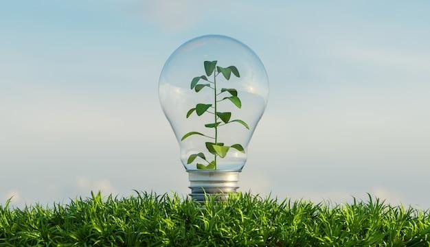 Bulbo di vetro su un terreno ricco di vegetazione con uno sfondo di nuvole e una pianta al suo interno. rendering 3d