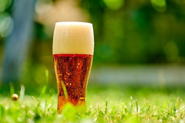Bicchiere di birra fresca fredda