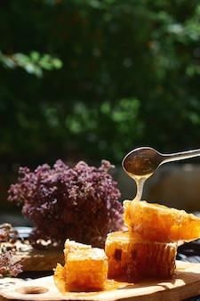 Barattoli di vetro con nido d'ape su uno sfondo di foglie verdi, un sano concetto di colazione