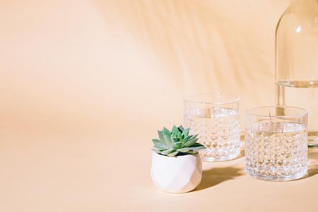 Bicchiere d'acqua su sfondo pastello con ombra di foglia di palma tropicale e pianta succulenta