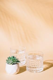 Bicchiere d'acqua sulla superficie pastello con ombra di foglia di palma tropicale e pianta succulenta