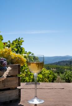 Bicchiere di vino bianco con grappoli di uva rossa e bianca su uno sfondo di vigneto