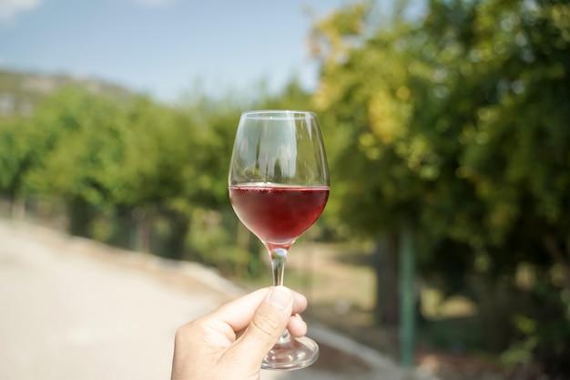 Bicchiere di vino in mano sullo sfondo dei vigneti estivi della fattoria vino rosso fatto in casa dalla somma...