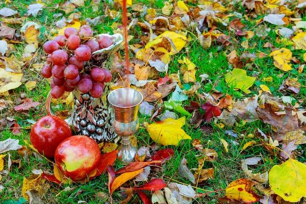 Bicchieri di vino rosso frizzante su sfondo bianco uva da vino bicchiere di festività ebraiche