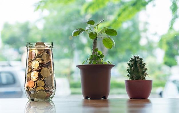 Monete d'oro in bottiglia trasparente con cactus in pentola sul tavolo di legno