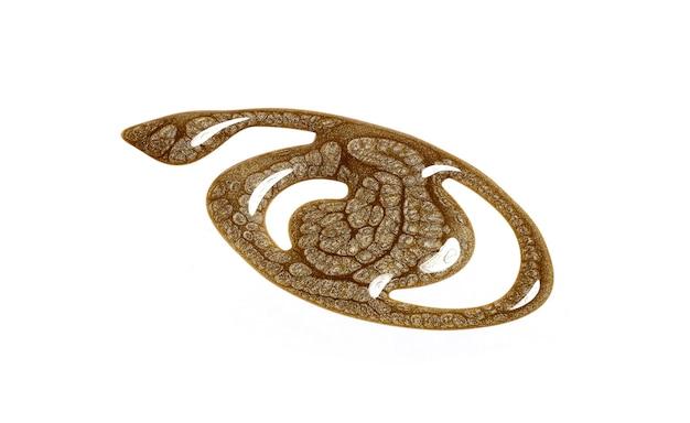Smalto per unghie oro isolato su bianco