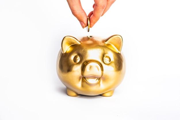 Banca piggy dell'oro e dollaro isolati su fondo bianco - concetto di risparmio dei soldi. affari, concetto di finanza.