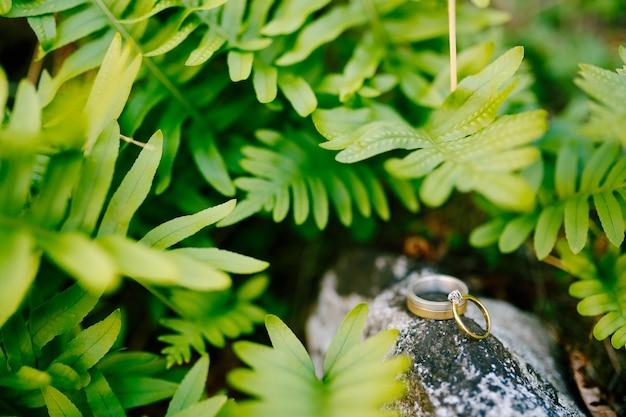 Fedi nuziali d'oro e un anello di fidanzamento su una grande pietra sullo sfondo di foglie di felce verde
