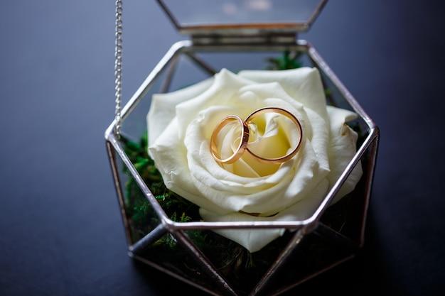 Fedi nuziali in oro per gli sposi nel giorno delle nozze. gioielli per la vacanza di una coppia innamorata