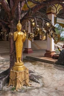 Una statua dorata del buddha sotto l'albero dei desideri con foglie d'oro al tempio buddista della grotta della tigre nella provincia di krabi in thailandia. è una tradizione buddista scrivere i desideri su foglie di metallo.
