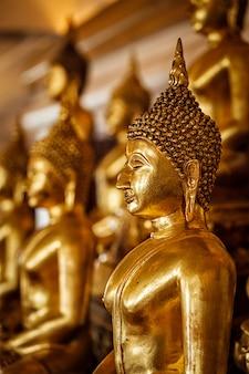 Statue dorate di buddha in tempio buddista