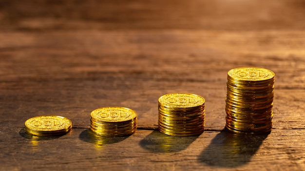 Monete d'oro con pianta giovane. concetto di aumento della crescita dei soldi.
