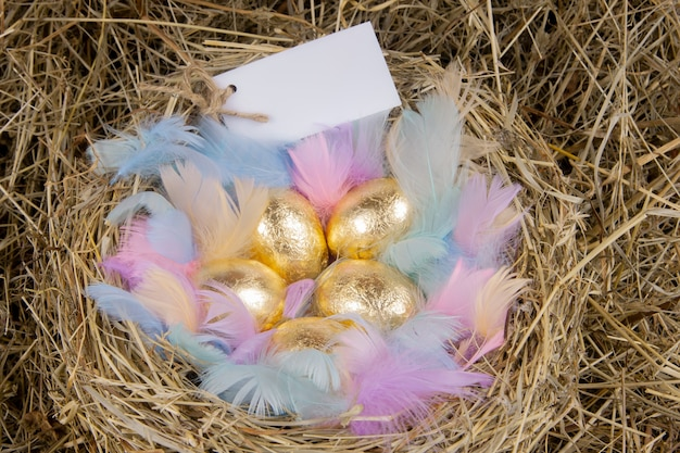 Uova d'oro con piume colorate in un nido con una nota mock up. pasqua di concetto.