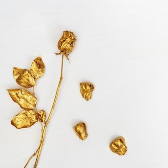 Il fiore dorato è aumentato da vicino con i petali di caduta, fiore di modo.