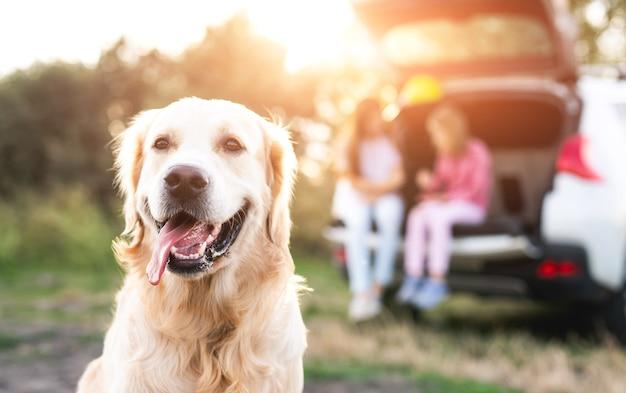 Golden retriever cane in primo piano e ragazze nel bagagliaio aperto che riposano sulla natura al tramonto