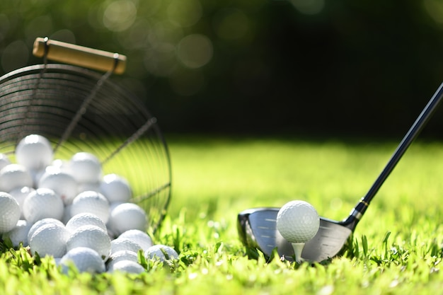 Pallina da golf su erba verde pronta per essere colpita per la pratica