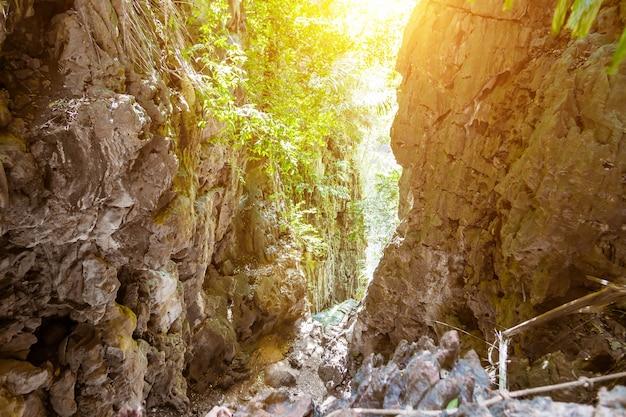 Gola nelle montagne tropicali accesso nella giungla alla laguna in cima alle scogliere della penisola di railay