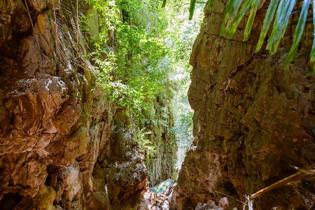 Gola nelle montagne tropicali accesso nella giungla alla laguna in cima alle scogliere della penisola di raleigh