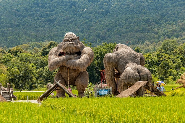 Statue di gorilla e altri animali realizzati con cannucce in mostra al lago huai thung tao per turisti e visitatori