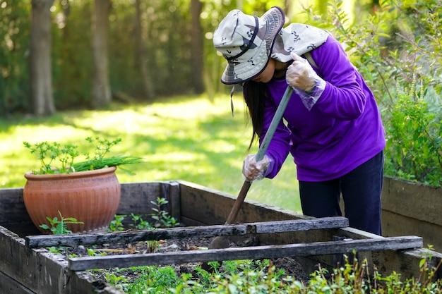 Operaio laureato che si prende cura della pianta in giardino.