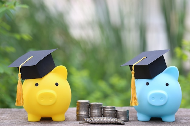 Cappello di laurea sul salvadanaio giallo e salvadanaio blu con una pila di monete soldi sullo spazio verde della natura