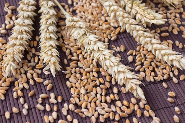 Chicchi, spighe di grano su sfondo marrone
