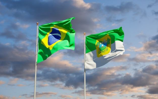 Grande do norto bandiera dello stato del brasile. grafica 3d