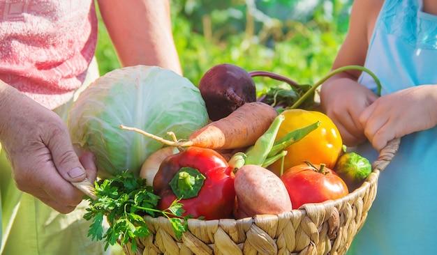 Nonna con verdure in giardino.