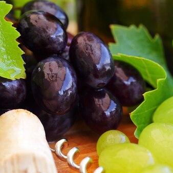 Foglie di vite e uva, sfondo di vino