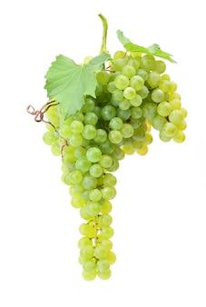 Uva che appende su una superficie bianca