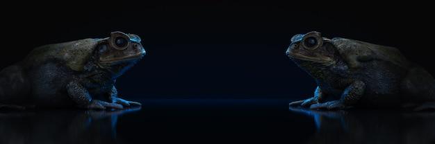 Primo piano della rana dell'erba su un rendering 3d di sfondo scuro