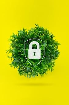 Globo di erba con lucchetto gologram, concetto per l'ambiente e la conservazione. concetto salva