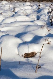 Erba in grandi cumuli dopo nevicate e bufere di neve, l'inverno