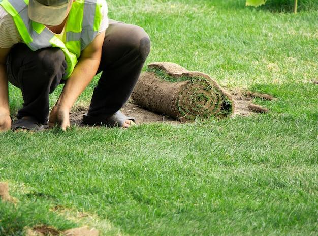 Erba per falciare un prato sullo sfondo un lavoratore sfocato sta posando un prato di erba fresca