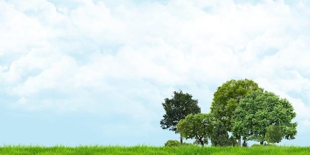 Vista di alberi e erba cieli nuvolosi ampio angolo di paesaggio 3d illustrazione