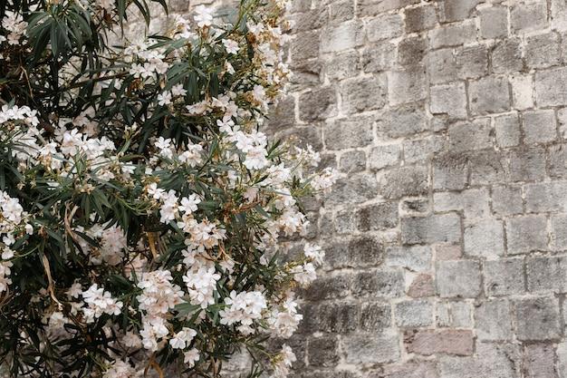 Muro di mattoni grigi e legno con fiori bianchi. sfondo
