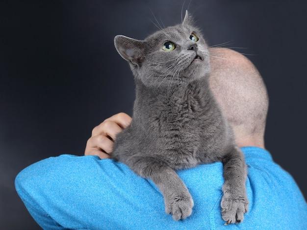 Gatto grigio seduto sulla spalla di un uomo