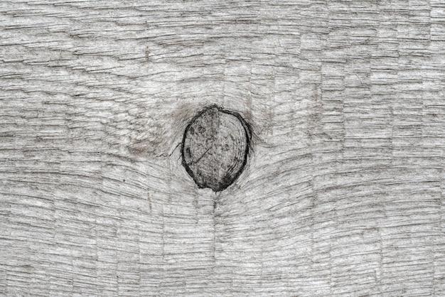 Fondo di legno naturale grigio con il nodo. vista macro ravvicinata del modello in legno, struttura in legno antico.