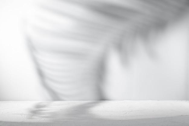 Stanza grigia per la presentazione del prodotto con ombre naturali