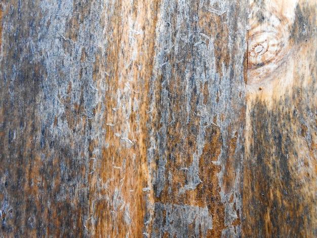 Sfondo di stecca di legno grigio con texture grunge marrone nodi