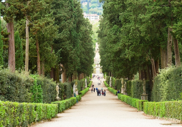 Vicolo verde nei giardini di boboli al giorno di estate, firenze, italia