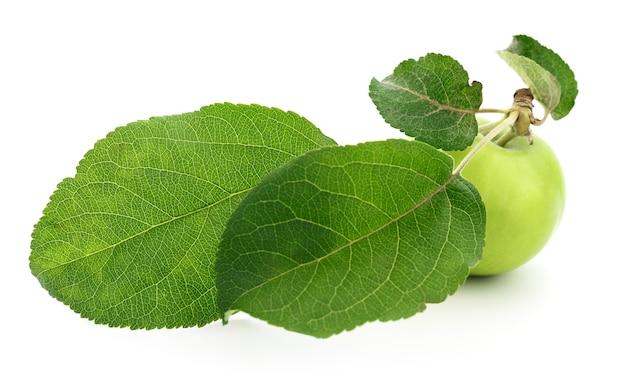 Mela verde con foglie isolate su bianco.