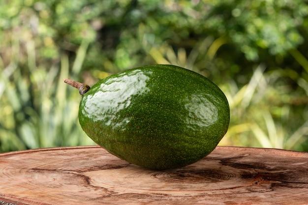Frutto di avocado verde isolato su superficie sfocata.