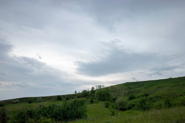 Bei prati verdi sotto un cielo nuvoloso all'inizio dell'estate