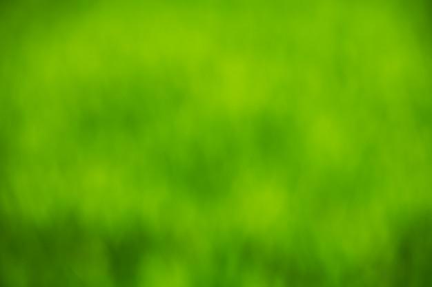 Bokeh verde astratto sfondo chiaro